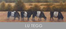 Lu Tegg2d