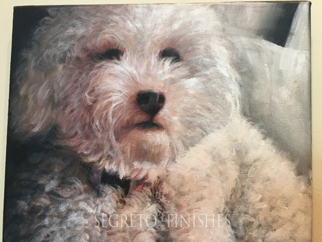 What's Segreto's Been Up To - Dog Portrait Painting by Segreto Gallery Artist
