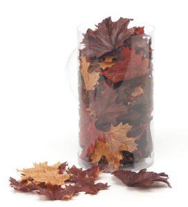 Segreto Finishes Fall Leaves Supplies