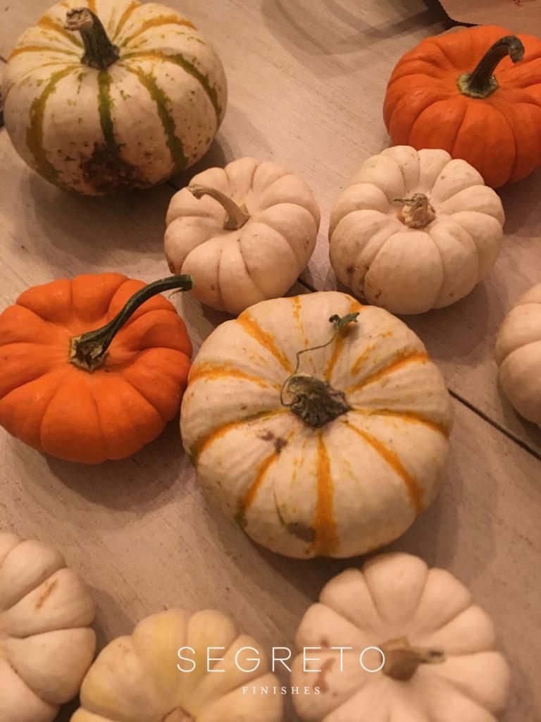Segreto Finishes Pumpkins Fall Decor